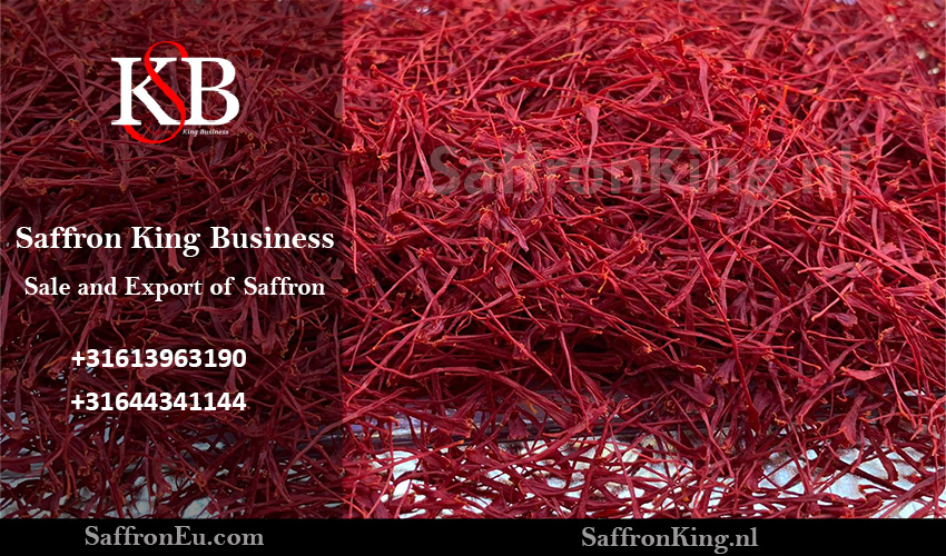 But what is the daily price of exporting saffron in Saffron King Business Company?