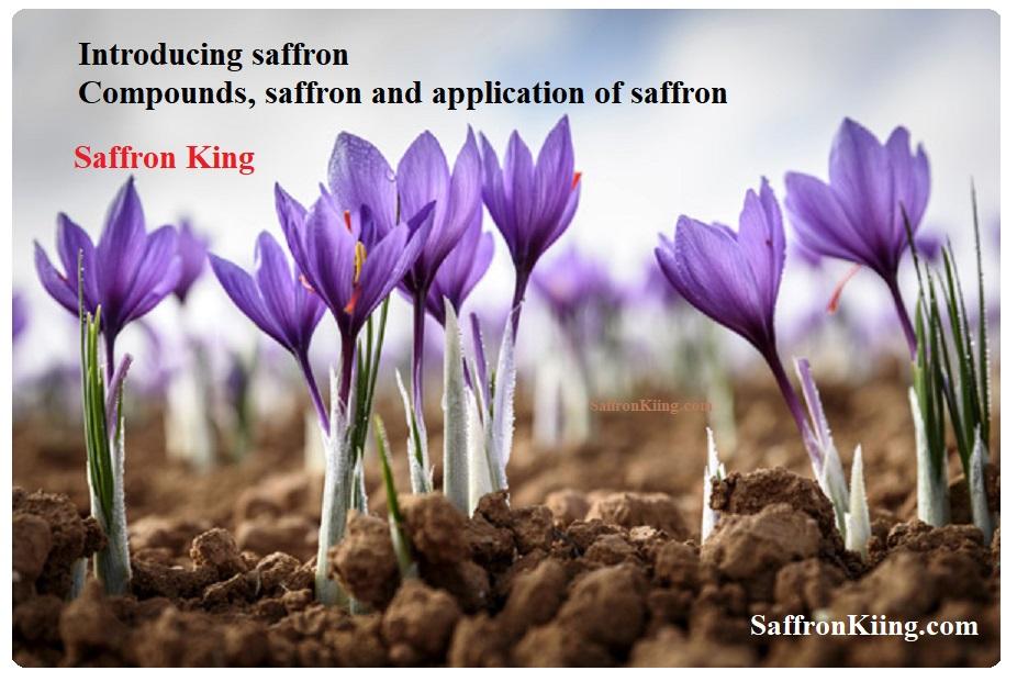 Compounds, saffron and application of saffron